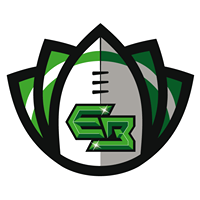 emerald-bowl-iv-logo